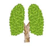 De groene bladerenlongen zoals symbool van ecologie maken milieu schoon vector illustratie