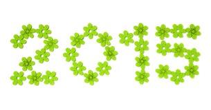 de groene bloem van 2015 Stock Afbeeldingen