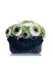De groene bloemen in een groene pot op geïsoleerde achtergrond met denken na Royalty-vrije Stock Afbeeldingen