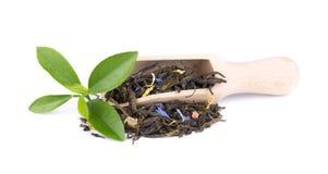 De groene die thee van Ceylon met korenbloem en gekonfijte vrucht, op witte achtergrond wordt geïsoleerd royalty-vrije stock afbeelding