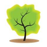 De groene ecologie van de boomaard Stock Afbeeldingen