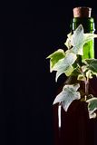 De groene fles van de glaswijn met klimop Stock Afbeelding