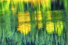 De groene Gele Pas van Autumn Reflection Abstract Gold Lake Snoqualme Stock Foto's