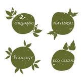 De groene getrokken hand van het ecologieetiket en grunge plaatste vector Stock Afbeeldingen