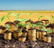 De groene groei, zaken Stock Afbeeldingen