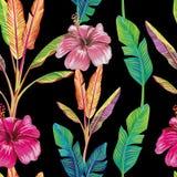 De groene hibiscus van banaanbladeren bloeit zwarte stock illustratie