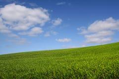 De groene (horizontale) heuvel royalty-vrije stock fotografie