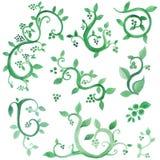 De groene inzameling van de waterverfinstallatie royalty-vrije illustratie