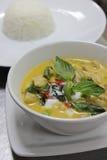 De groene Kip van de Kerrie met rijst Stock Afbeelding