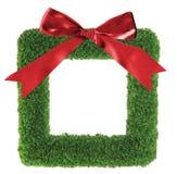De groene kroon van grasKerstmis stock afbeelding