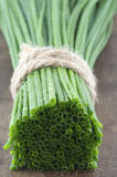 De groene lentes van uiclose-up Stock Foto's