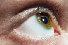 De groene macro van het mensenoog Stock Fotografie