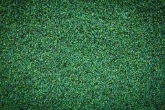 De groene mooie achtergrond van de grastextuur Stock Afbeeldingen