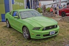 De groene Mustang van de Doorwaadbare plaats van 2012 Royalty-vrije Stock Foto