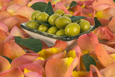 De groene olijven zijn een natuurlijk product Royalty-vrije Stock Afbeelding