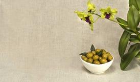 De groene olijven zijn een natuurlijk product Royalty-vrije Stock Foto's