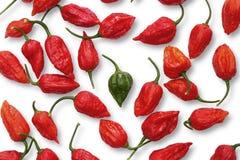 De groene peper van Buht Jolokia tussen Rode degenen Stock Fotografie