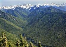 De groene Rand van de Orkaan van de Bergen van de Sneeuw van Valleien stock afbeelding