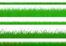 De groene Reeks van het Gras Stock Foto's