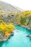 De groene rivier Stock Afbeeldingen
