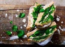 De groene sandwich van Turkije Stijlplattelander Stock Foto's
