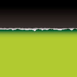 De groene scheur verdeelt Stock Foto