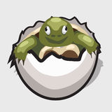 De groene schildpad is geboren van ei, het beeld van de beeldverhaalstijl Royalty-vrije Stock Afbeeldingen