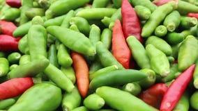 De groene Spaanse peper roteert stock videobeelden