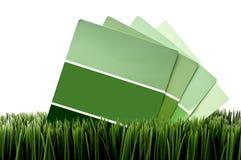 De groene steekproeven van de verfspaander op groen gras Stock Foto