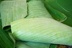 De groene textuur van banaanbladeren Royalty-vrije Stock Fotografie