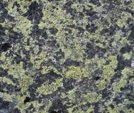 De groene textuur van de bergsteen Stock Foto's