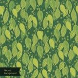 De groene textuur van de bladerenoppervlakte. Patroon Stock Fotografie