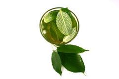 De groene thee van het ijs stock afbeelding