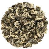De groene thee van Yunnanbi Lo Chun Green Snail Spring Stock Afbeeldingen