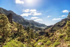 De groene vallei Barranco DE Mogan op Gran Canaria royalty-vrije stock foto's