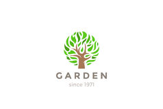 De groene vector van het het Embleemontwerp van de Bladerenboom royalty-vrije illustratie