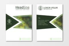 De groene vector van het het ontwerpmalplaatje jaarverslag van de bedrijfsbrochurevlieger Royalty-vrije Stock Afbeeldingen
