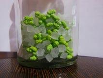 De groene venkel van Sugar Coated en suiker-suikergoed mondverfrissing in glasfles royalty-vrije stock fotografie