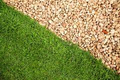 De groene vloer van het gebiedsgras Royalty-vrije Stock Fotografie
