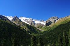 De groene weiden van de berg Stock Afbeeldingen