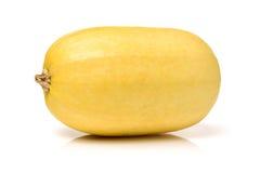 De groente van Cucurbitapepo Stock Foto's