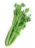 De groente van de selderie Royalty-vrije Stock Foto's