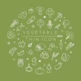 De groenten en de vruchten verdunnen pictogrammen Stock Foto's