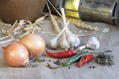 De groenten liggen bij het ontslaan in de voorraadkast Royalty-vrije Stock Foto