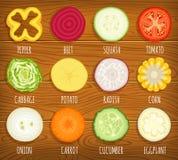 De groenten van de diacirkel Reeks vector gesneden groenten stock illustratie