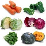 De groenten van de foto Stock Foto's