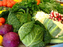 De groenten van de herfst Stock Fotografie