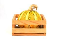 De groenten van de herfst - pompoenen Stock Afbeelding