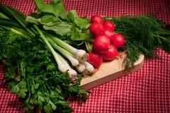 De groenten van de lente Stock Foto