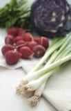 De groenten van de lente Royalty-vrije Stock Fotografie